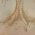 Family Birth Place Tree of Life
