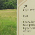 Custom Post and Panel Directional for Olana