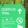 Custom Routed Trail Signs Mounted to Knotty Cedar Posts
